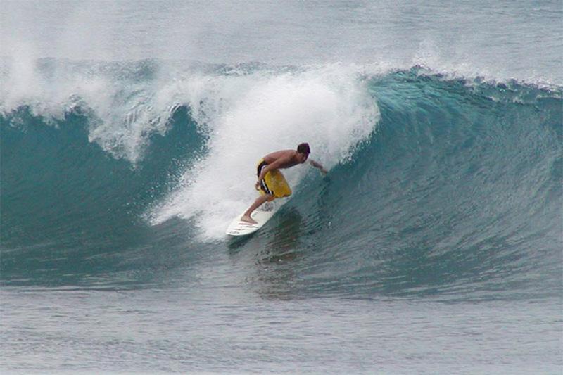 stan_shebs_surfer